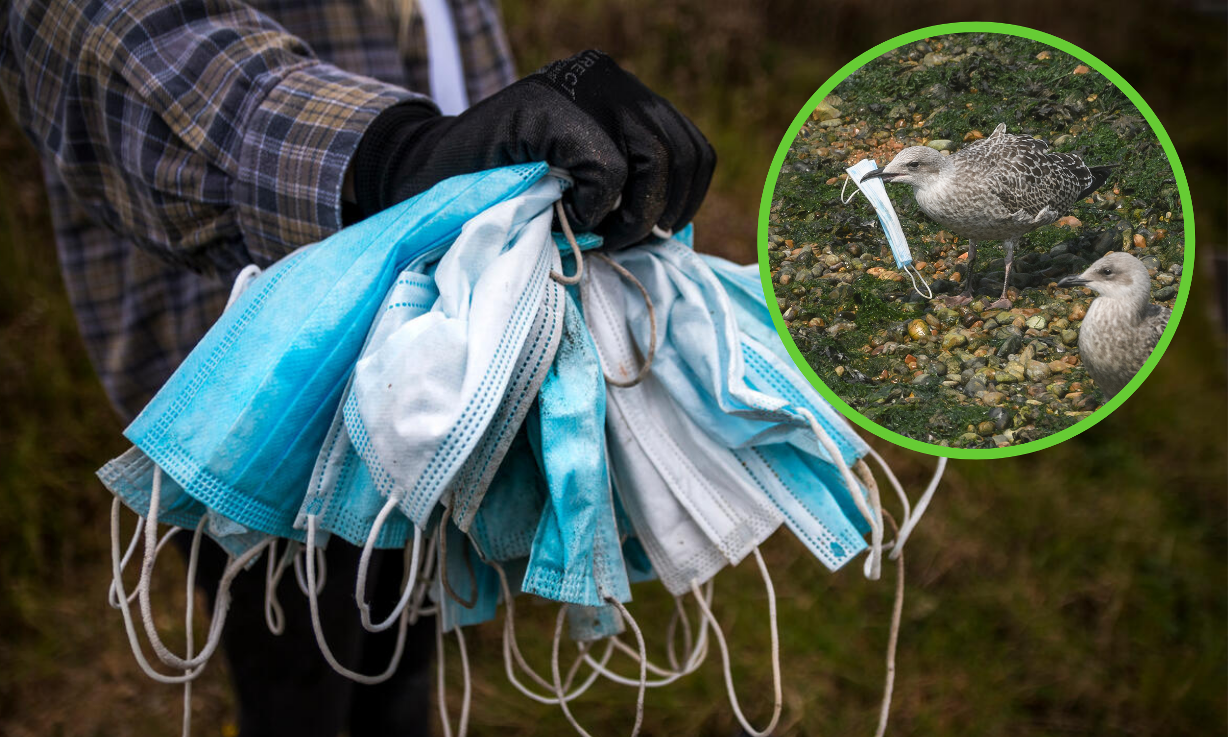 Millions of discarded masks will take hundreds  of years to decompose.